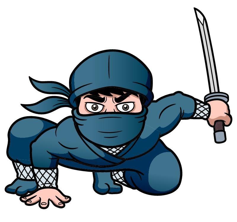 Ninja Kids Video Game